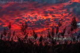 2014-12-02-Fuego-en-el-Cielo
