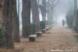 2014-12-27-Niebla-en-La-Vega