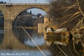 2016-01-26-Puente-de-San-Martin