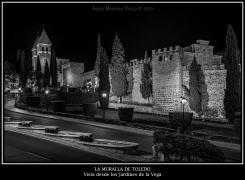 2020 04 14 - 0019 La Muralla de Toledo vista desde La Vega