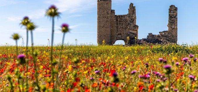 PROVINCIA DE TOLEDO – Castillo de Rivadeneyra (Caudilla)