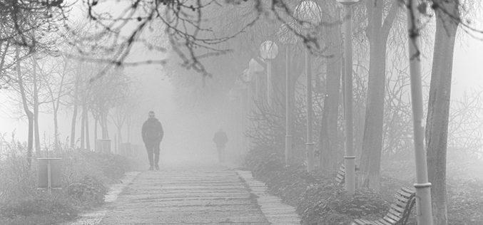 Paseo Fotográfico – Niebla en Safont, B&N