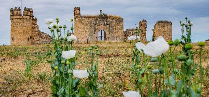Provincia – Castillo de San Silvestre. Novés